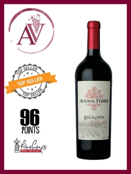 vino-tinto-malbec-achaval-ferrer-finca-mirador-argentina-vinos