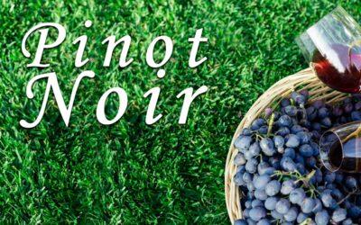 Pinot Noir y los Viñedos de Borgoña