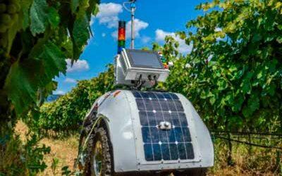 Investigadores de la Politécnica de Valencia presentan un robot para la viticultura del futuro