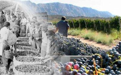 El vino francés, el tesoro preciado de Hitler