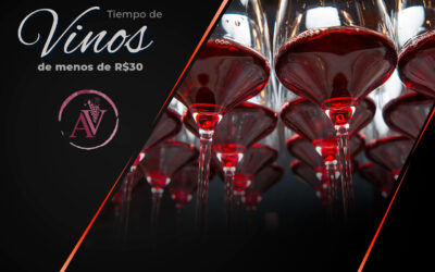 Vinos por menos de R$30 para disfrutar el análisis de los expertos de Argentina Vinos